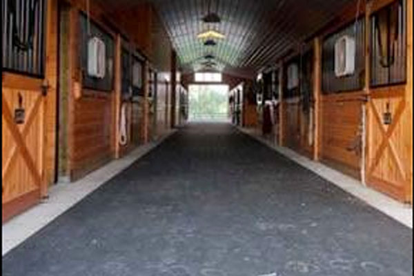 Horse barn with rubber horse stall mats